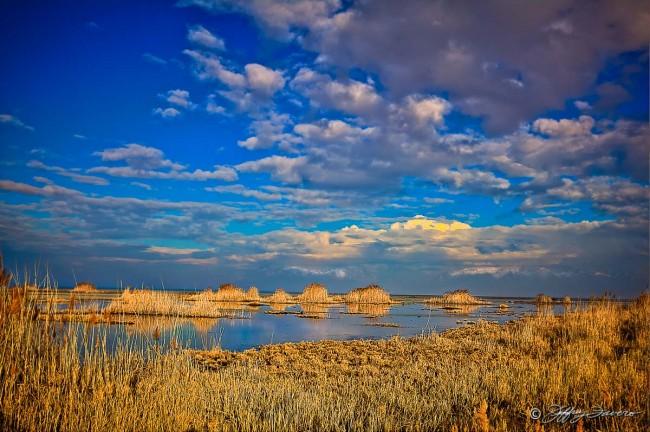 East Shore Antelope Island