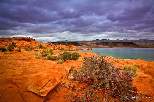 Redrock And Purple