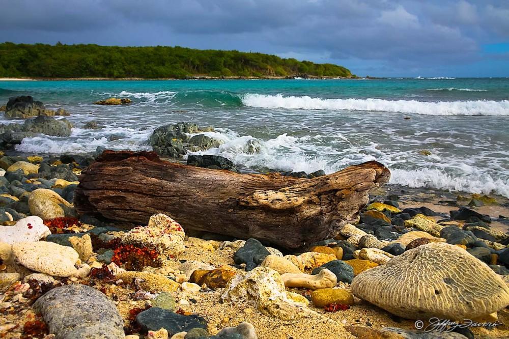 Low Tide - Vieques, PR  SVI