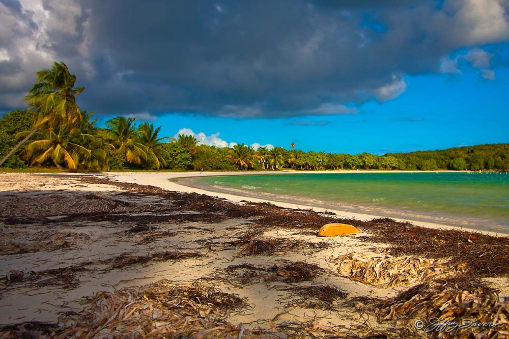 Late Afternoon  - Vieques