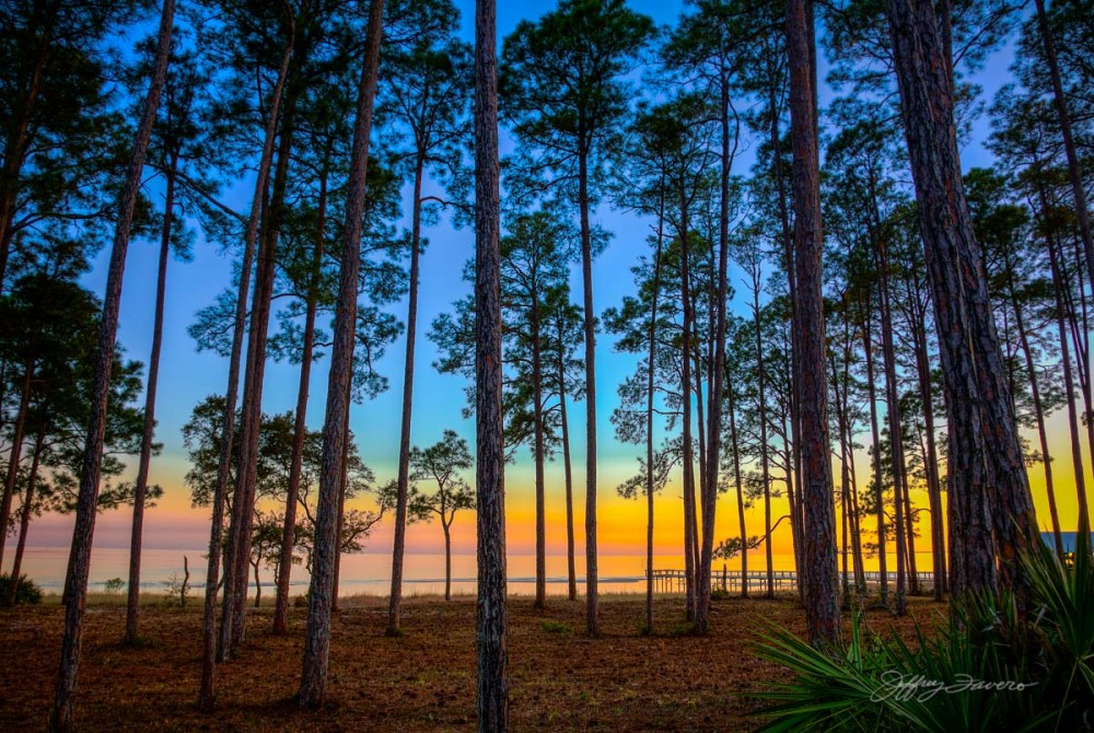Forgotten Coast Sunset