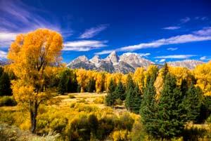 fall-colors-category-thumbnail