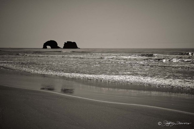 Oregon Coast Beach Reflection