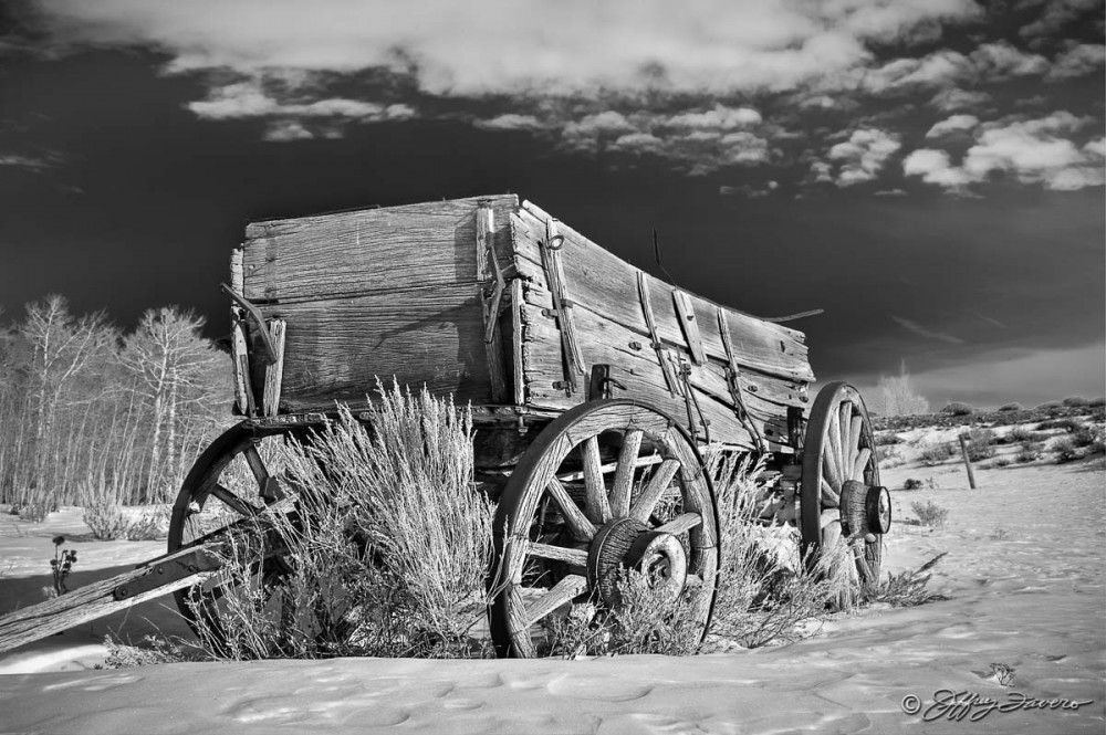 Winter Pioneer Wagon