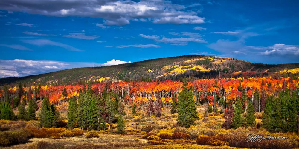 Uinta Mountain Fall Colors