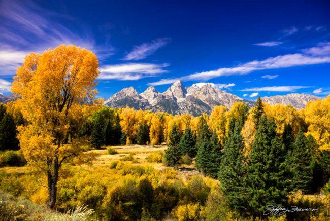 Teton Gold