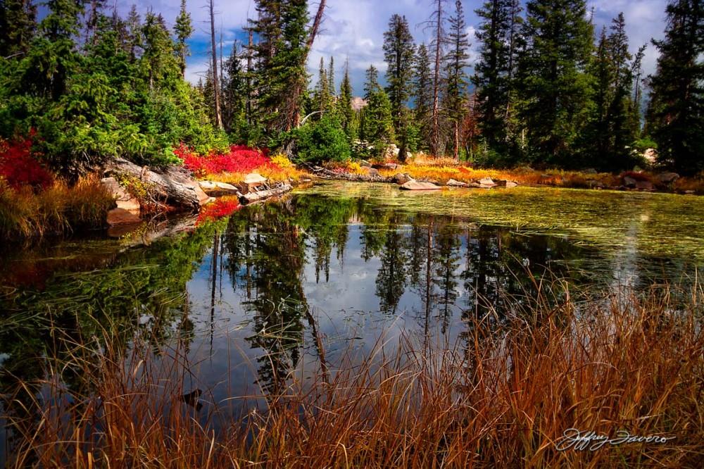 High Uinta Pond Reflection