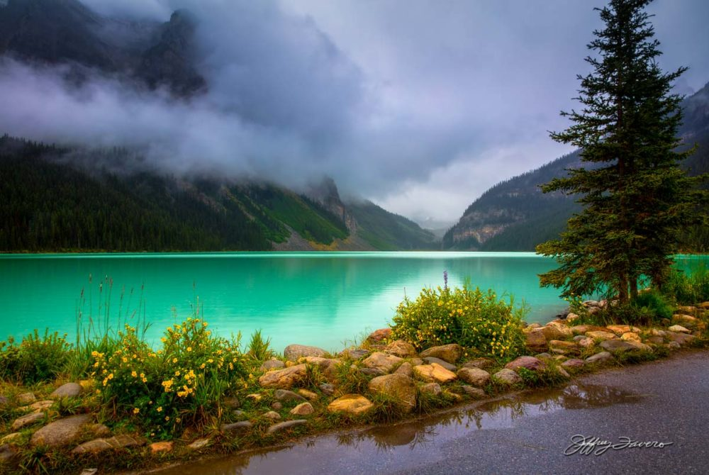 Nature's Candor - Lake Louise, Canada