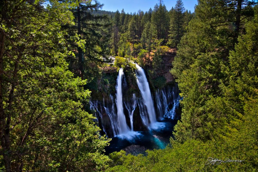 Burney Falls Through The Trees