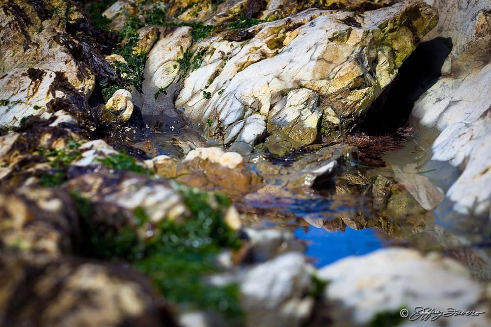 Low Tide Reflection