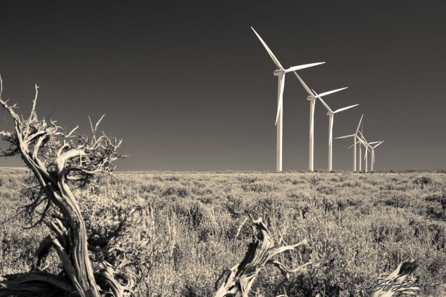 Wind Turbines And Sagebrush