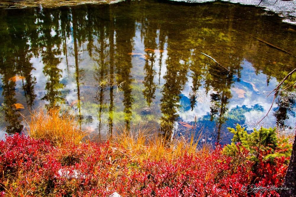 High Uinta Reflection