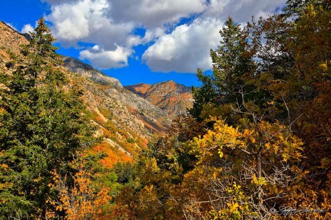 Up Ogden Canyon