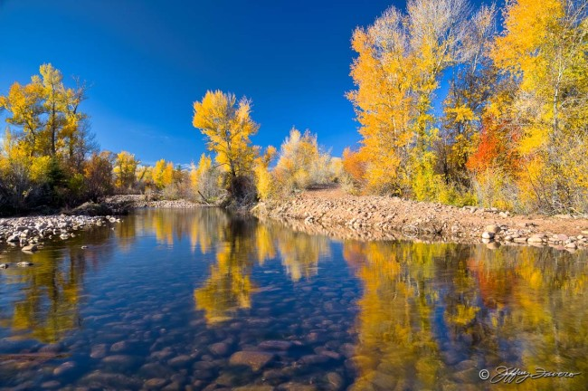 Blacks Fork River Reflection