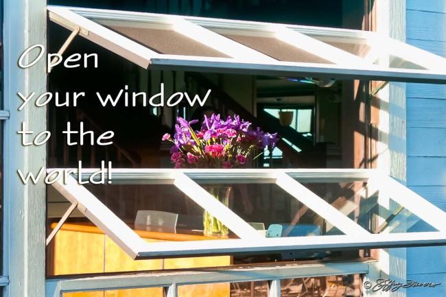 Open Your Window - SF Pier