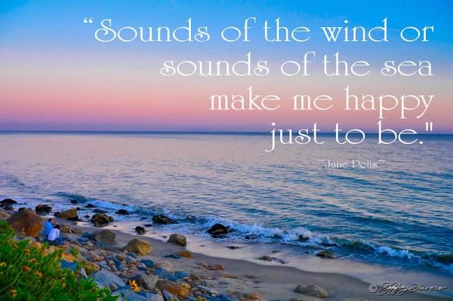 Sounds of the Sea - Malibu Beach, CA