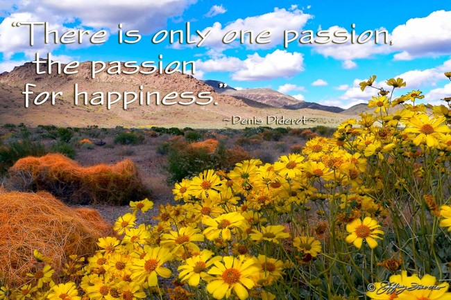 Passion For Happiness - Death Valley NP