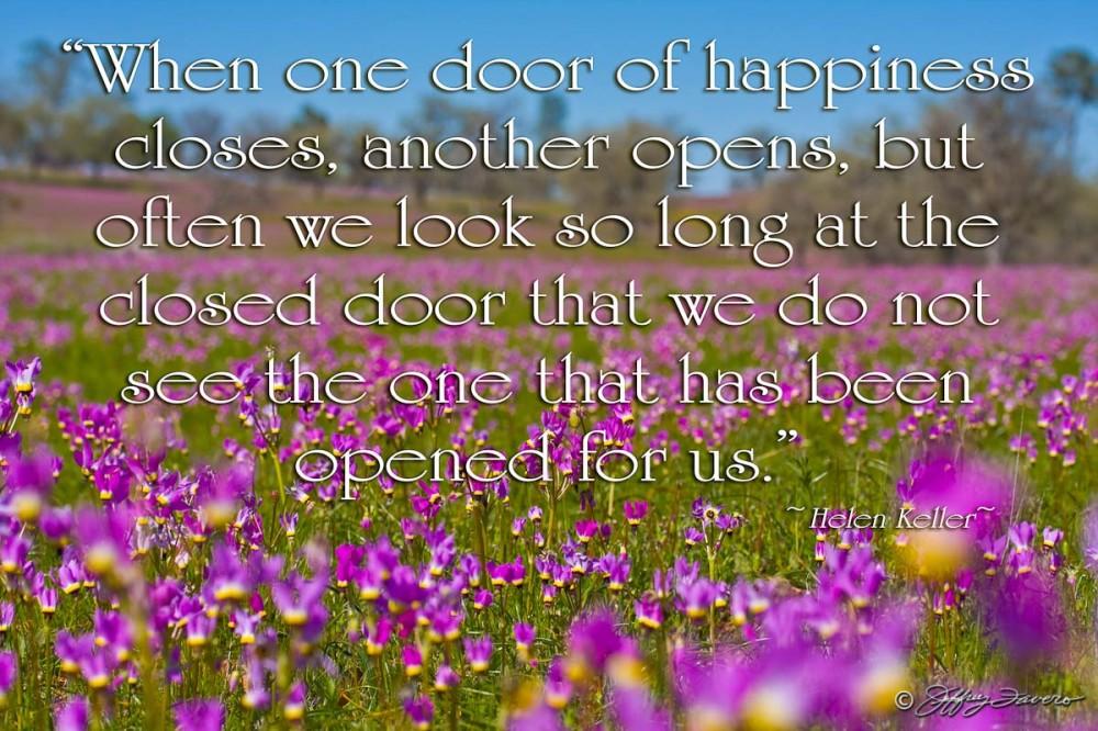 Door Of Happiness - Field Of Flowers KernCo