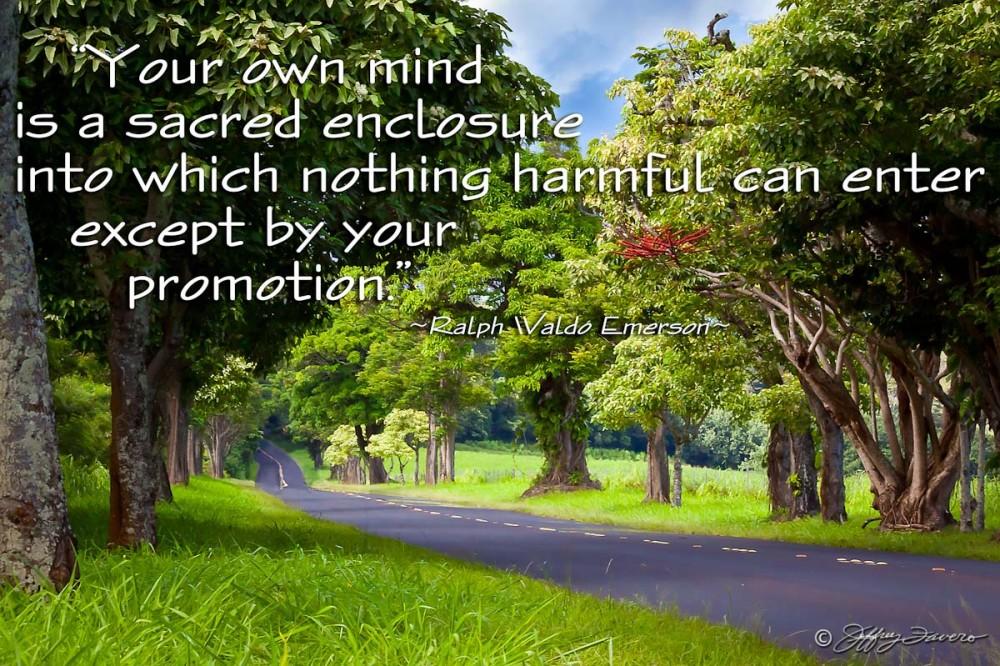 Mind Is A Sacred Enclosure - Kaua'i