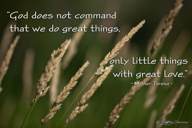 Great Things - Wheatgrass