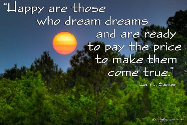 Dream Dreams - Sun Through Trees