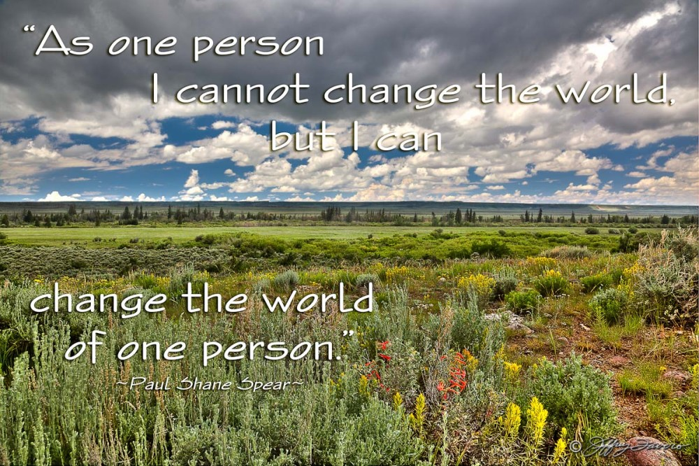Change The World - Spring Sagebrush