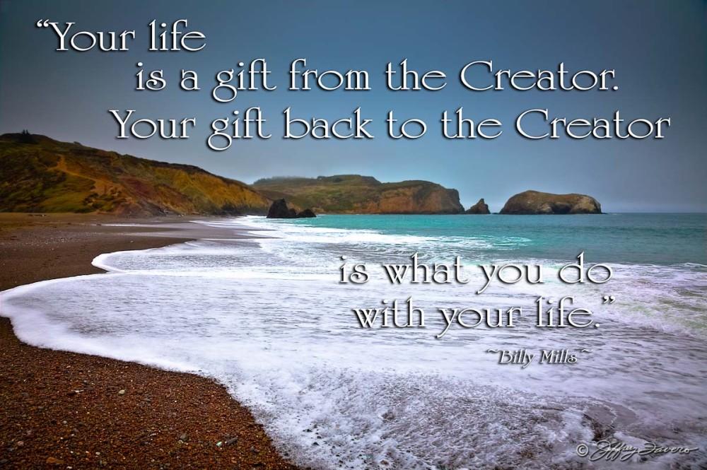 Life Gift - Rodeo Beach