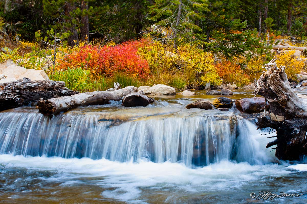 Fall Provo River Jeffrey Favero Fine Art Photography