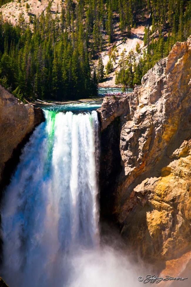 Lower Falls - Yellowstone NP