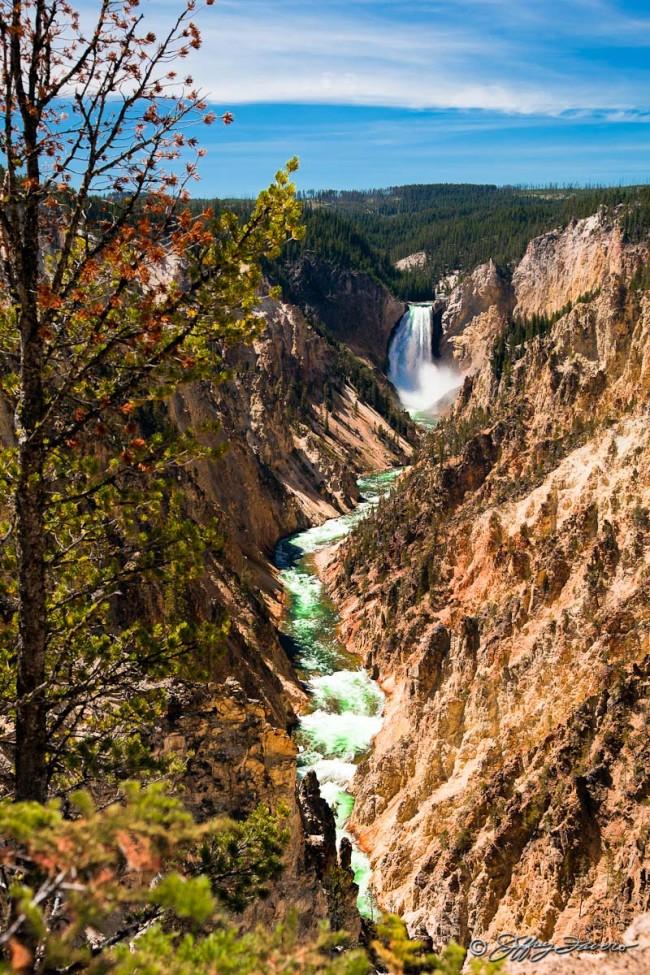 Lower Falls - Yellowstone NP Montana