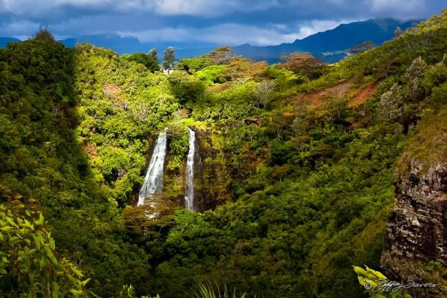 Opeaka'a Falls - Kaua'i, HI