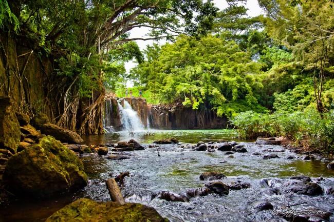 Kipu Falls - Kaua'i, HI