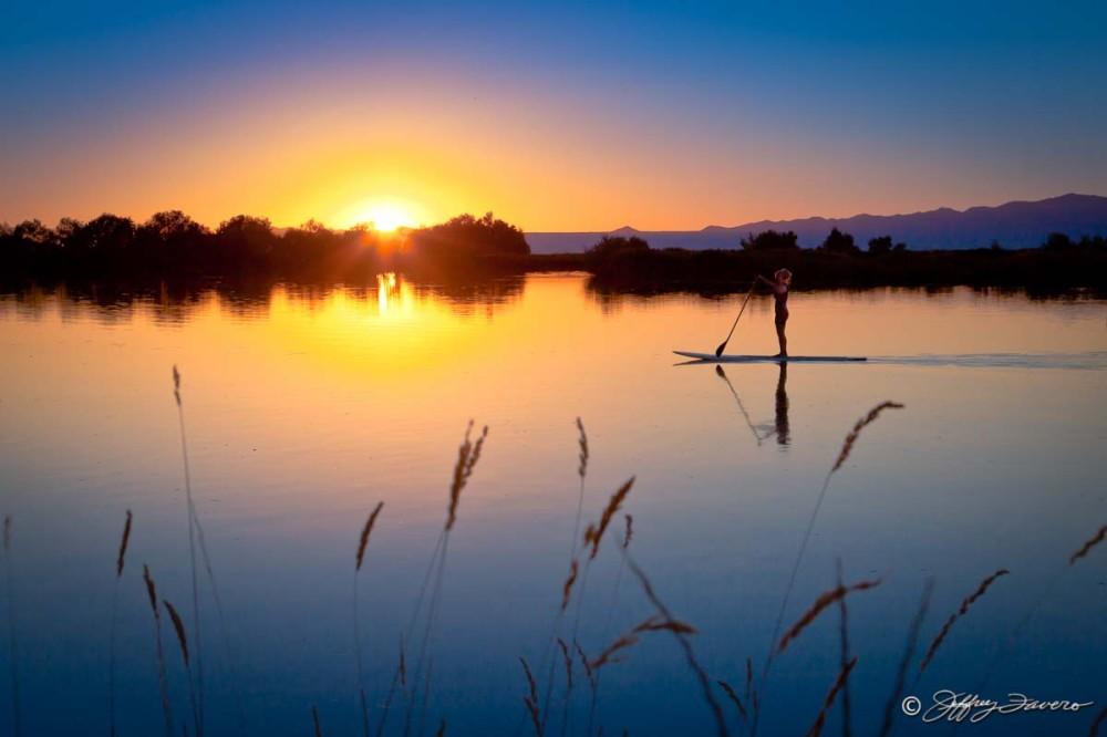 Farmington Pond - Paddle Surfer