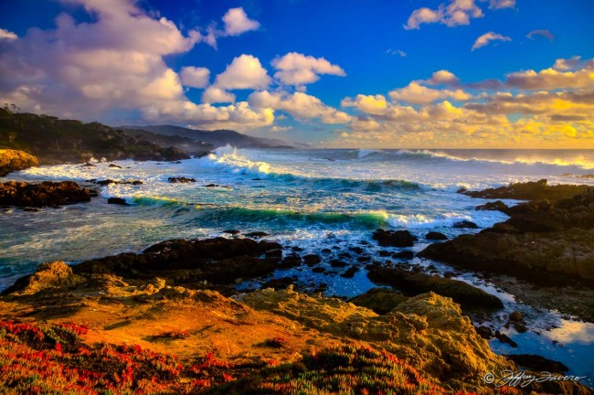 Cypress Point Lookout