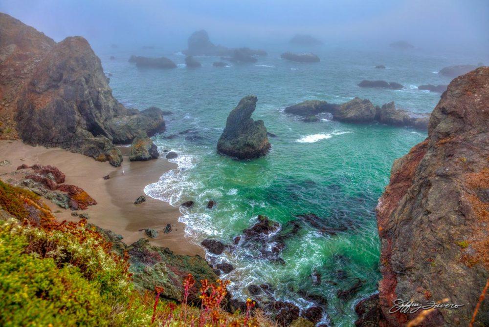 Mystical Sonoma Coast