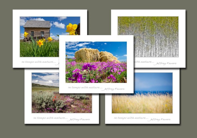 Scenic Landscape Assortment