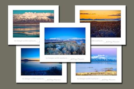 Antelope Island Assortment
