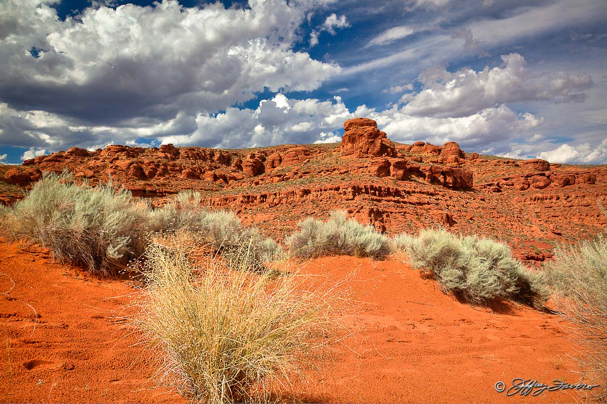Red Cliffs Desert Reserve St George Ut Jeffrey Favero Fine Art Photography