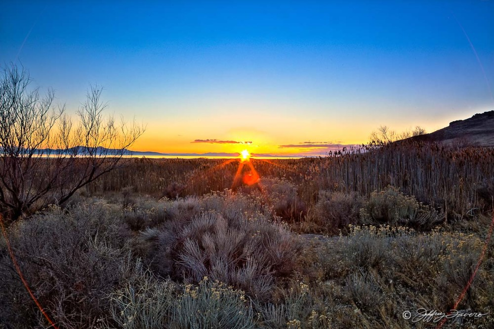 Sunset And Sage - Antelope Island State Park - Utah