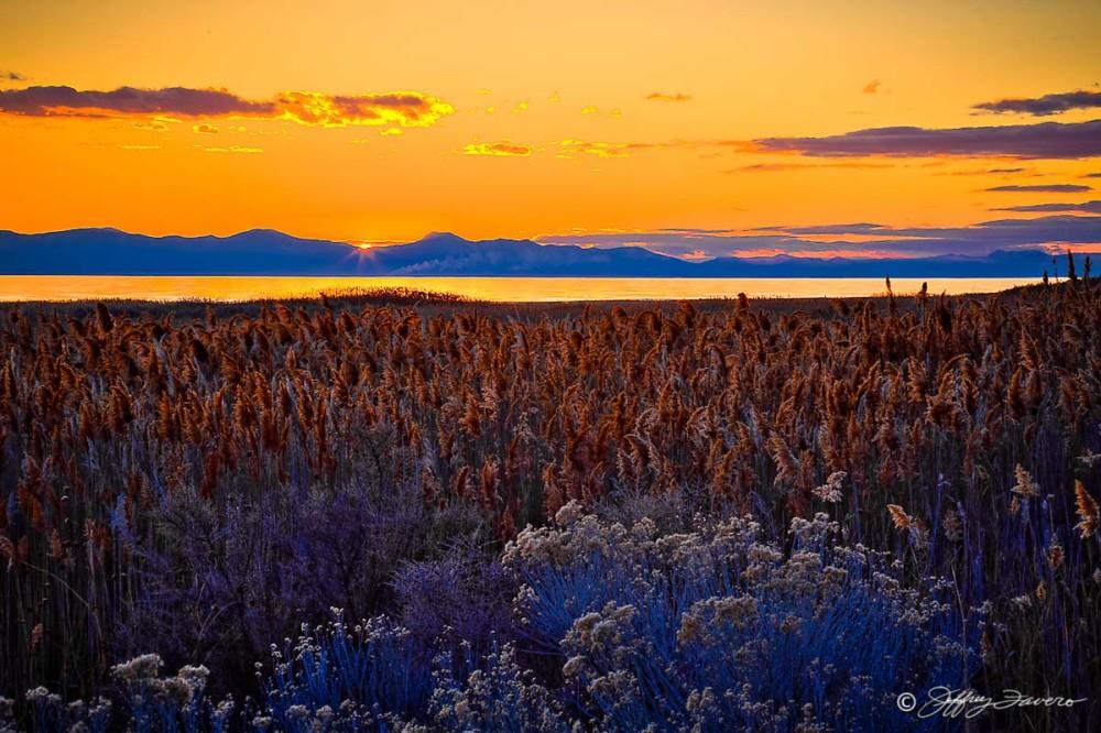 Last Sun Whiterock Bay - Antelope Island State Park - Utah