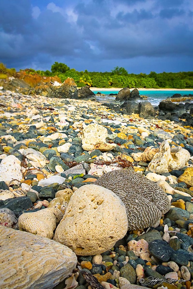 Vieques Low Tide