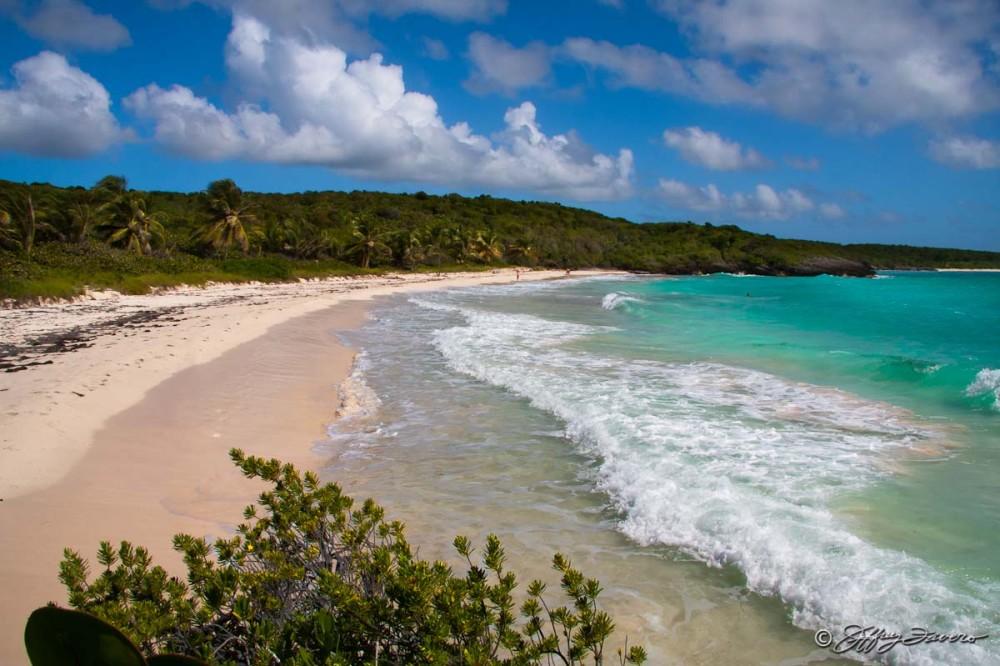 Navio Beach - Vieques, Puerto Rico SVI