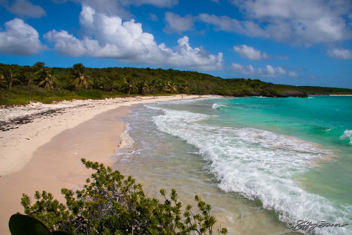 Navio Beach Vieques Puerto Rico Svi Jeffrey Favero