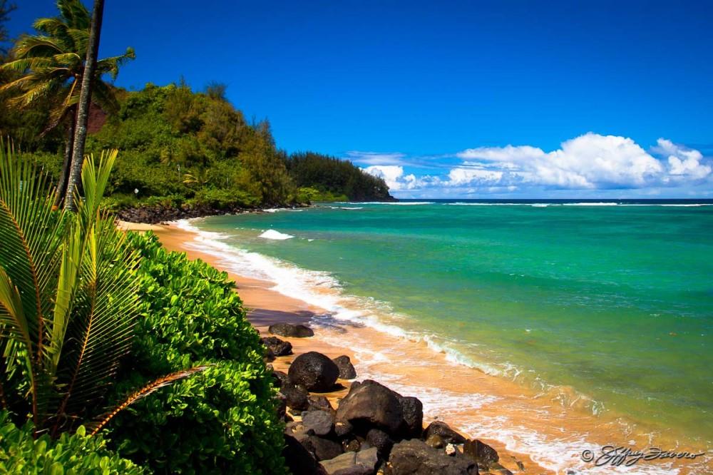 Kaua'i Shoreline