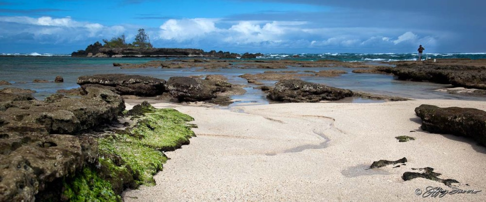 Low Tide - Northshore Oahu