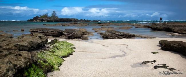 Low Tide - Northshore Oahu