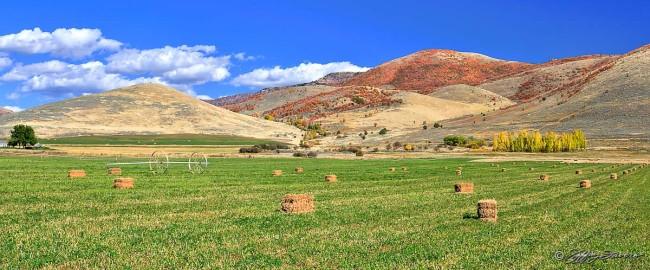 Middle Fork - Ogden Valley