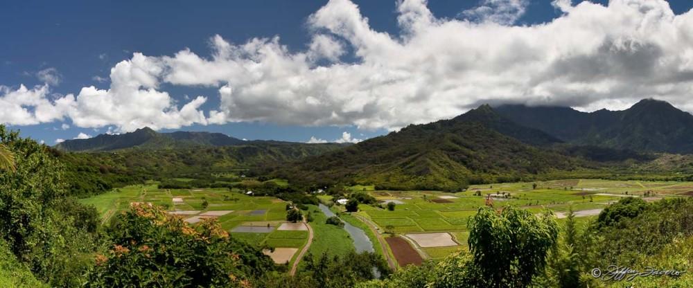Hanalei Valley Lookout - Kaua'i