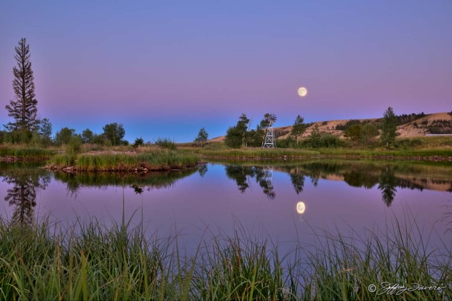 7F Pond August Moonrise