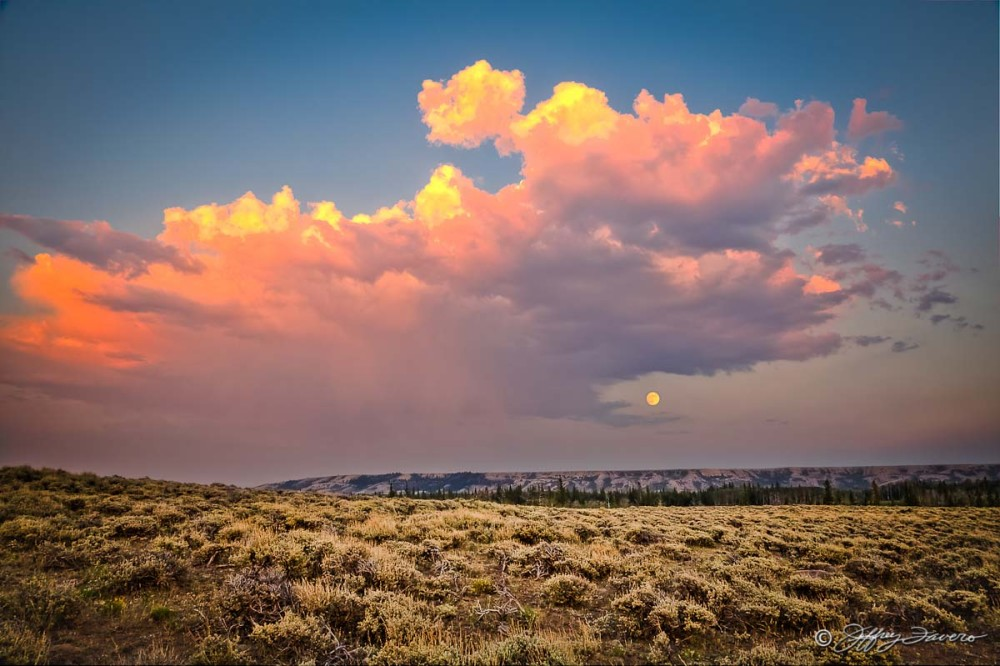 Full Moonrise And Sagebrush